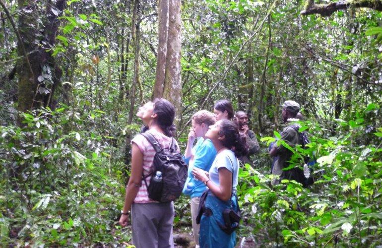 32-Day Wildlife & Cultural Experience in Rwanda, Uganda, Kenya & Tanzania