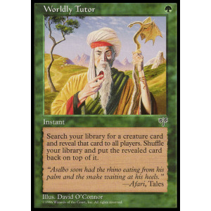 Worldly Tutor
