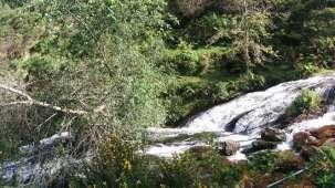 Holiday Home Resort,  Kodaikanal Kodaikanal Waterfall Holiday Home Resort